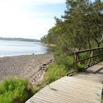 Foreshore Track Green Point Reserve (389858)