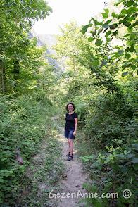 Malyas Kanyonu kenarındaki ormanlık yol