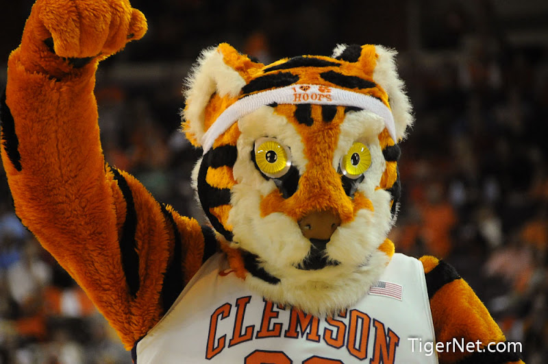 Clemson Basketball vs North Carolina Photos - 2013, Basketball, North Carolina, The Tiger