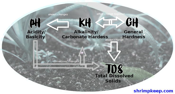 KH (Alkalinity / Carbonate Hardness) and GH (General Hardness) usually fluctuate together, and when they do, TDS (Total Dissolved Solids) is also affected. KH also always has an impact on pH (Acidity / Basicity levels). pH may or may not change KH and TDS, depending on whether the change is due to an increase in acidity or some other factors.