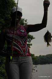 big bluegill