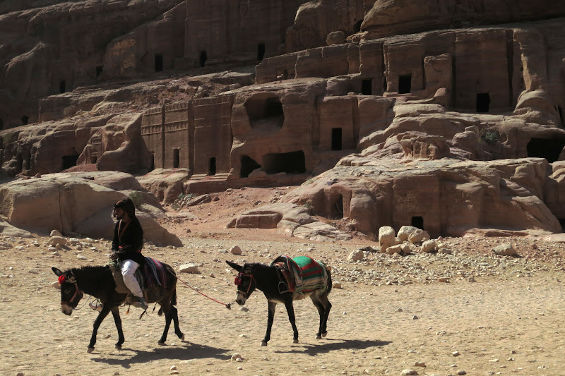 Bedouin and donkeys
