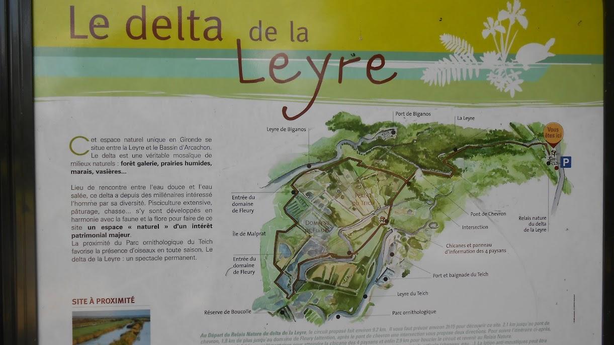 30 juin - à la découverte du delta de la Leyre 003