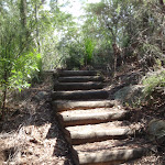 Steps between Illoura Lookout and Piles Creek (179373)