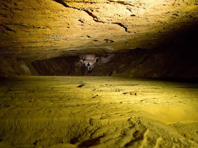Imatge des del fons de la cova