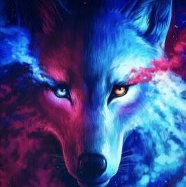 makcwolfff212000345