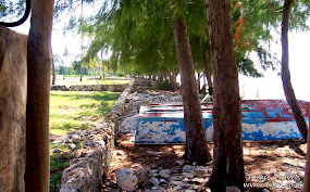 Makunduchi beach