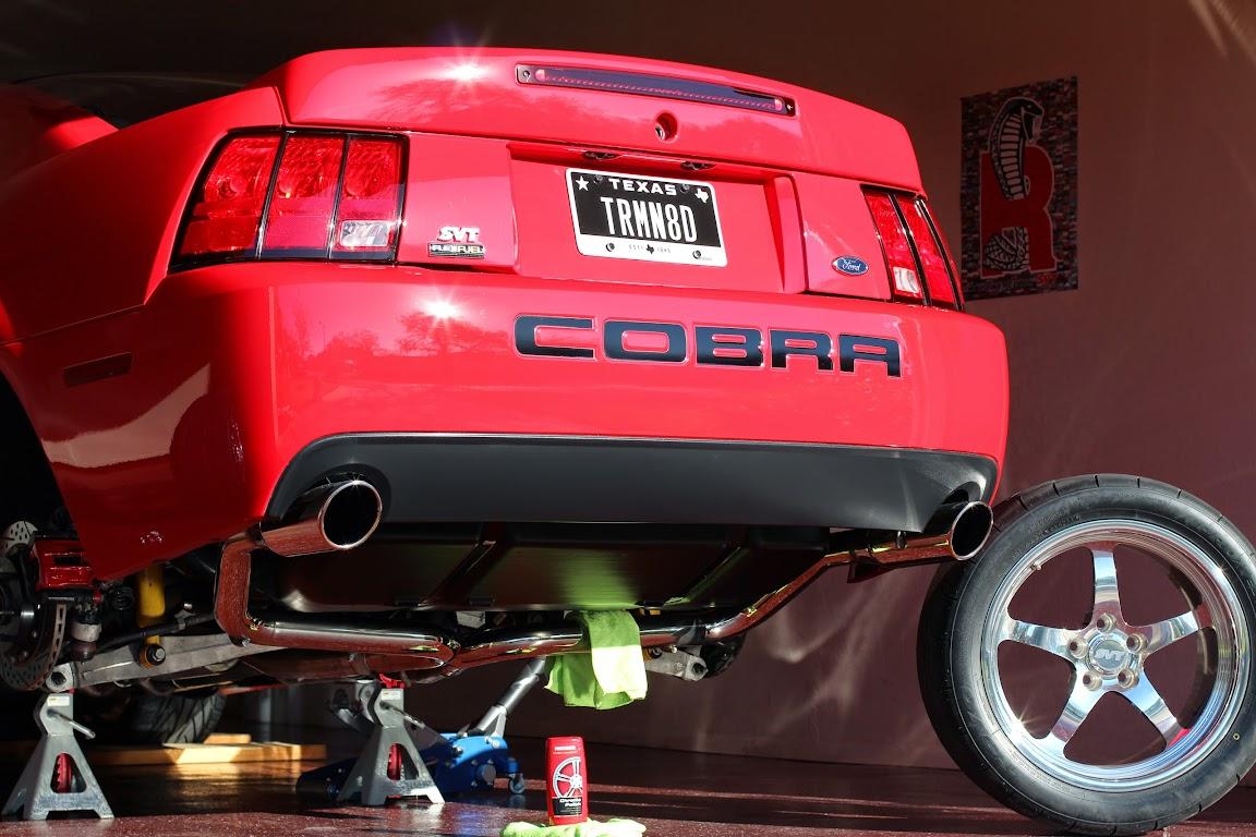 Terminator Cobra License Plates