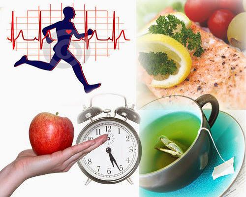 Что влияет на улучшение метаболизма?
