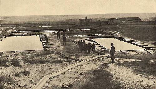 Visita a las salinas con motivo del XIV Congreso Internacional de Geología, celebrado en Madrid, en 1926  (Foto IGME)