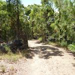 Trail near Murrays Beach on a sunny day (388982)