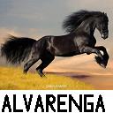 Hector Alvarenga Photo 15