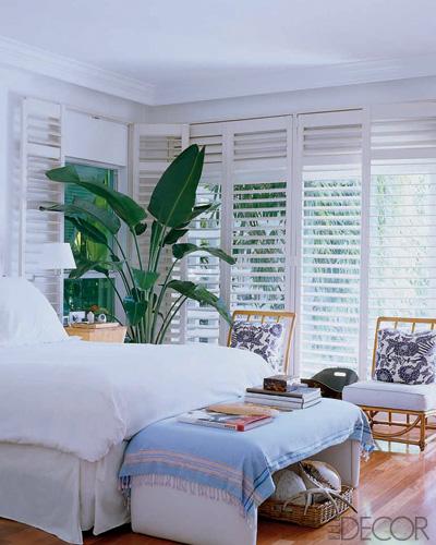 Lona de anna home tour paul wilmot 39 s miami shores home in florida - Indoor plant for bedroom ...