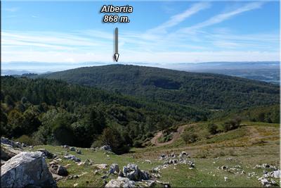 Albertia visto desde Jarindo