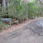 Road around Neranie Head campground
