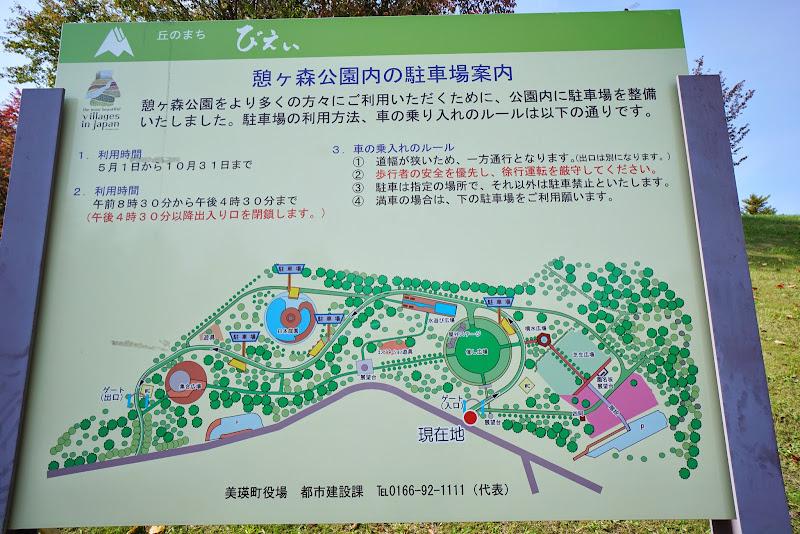 美瑛 憩々森公園 写真1