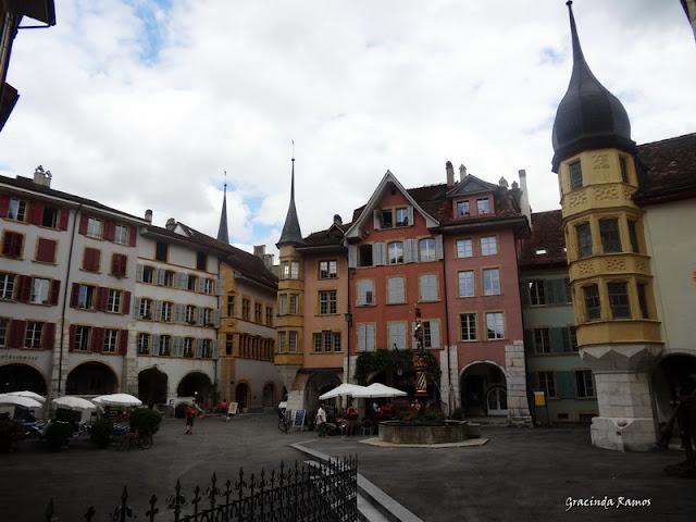 passeando - Passeando pela Suíça - 2012 - Página 14 DSC05195