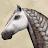 Pohjantuuli avatar image