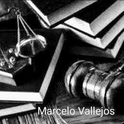 Marcelo Vallejos
