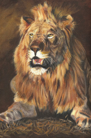 """""""King of Madikwe"""" by artist Pat Bistline."""