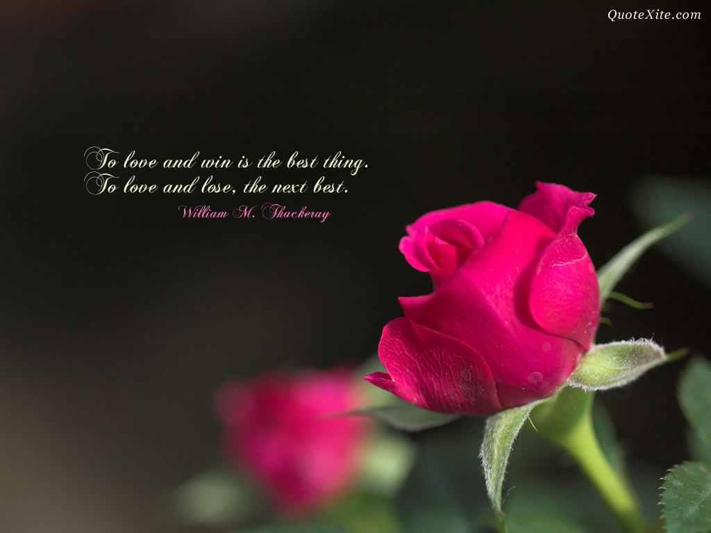 фото розы цитаты про любовь с аллахгиф