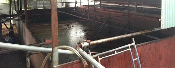 Bể chứa dầu điều sau khi ép