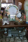 white pet parrot amongst antiques display of ornaments