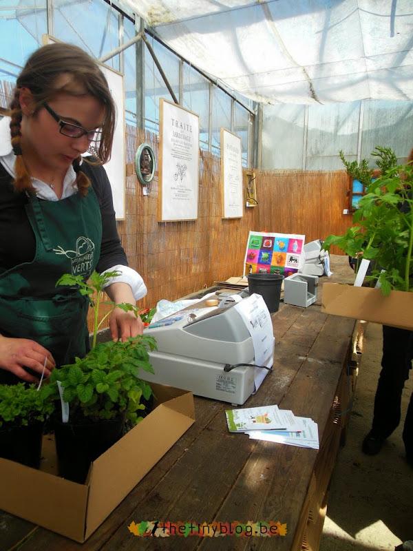 Paniers Verts Plants Cashier