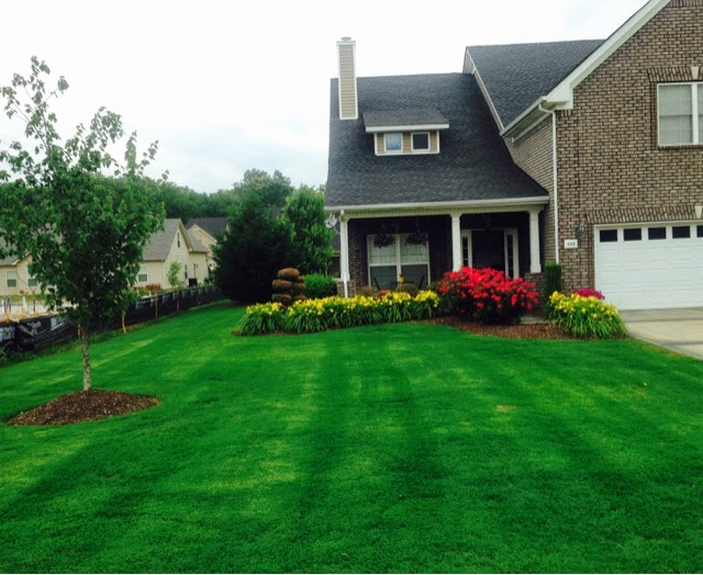 Murfreesboro Lawn Care News And Tips Spring In Tennessee