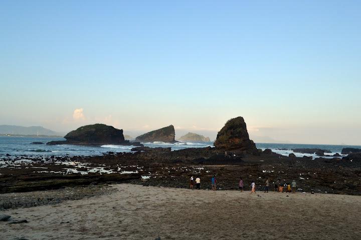 karang papuma_2