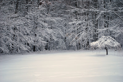 winter in Boyers, Pennsylvania