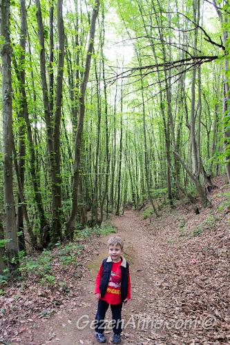 Ormanın derinliklerinde yürüyen oğlum, Polonezköy Tabiat Parkı