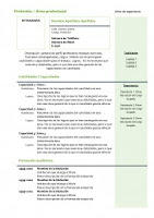 Currículum Vitae: Modelo Combinado 4