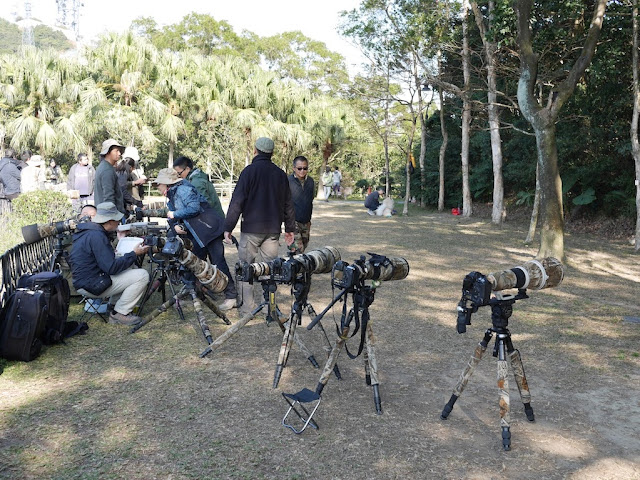 people near several professional cameras with large lenses on tripods near a wooded area at the Victoria Peak Garden in Hong Kong