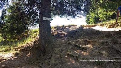 na zdjęciu szlak na Wysoka (Wysokie skałki)