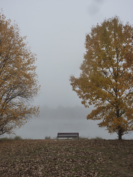 Why is the bench empty?