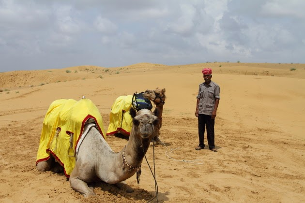 Camel safari on the sand dunes of Rajasthan