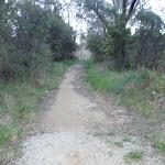 Leura Dirt Trail (186948)