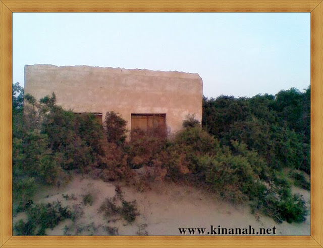 مواطن قبيلة الشقفة (الشقيفي الكناني) الماضي t8197-28.jpeg