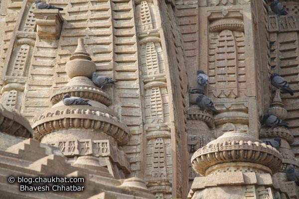 Bhangarh - Carvings on Steeple, and Pigeons