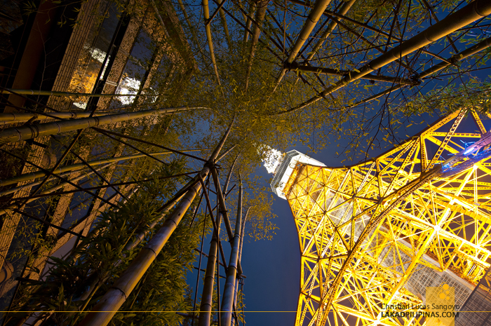 Bamboos Compete with Japan's Tokyo Tower