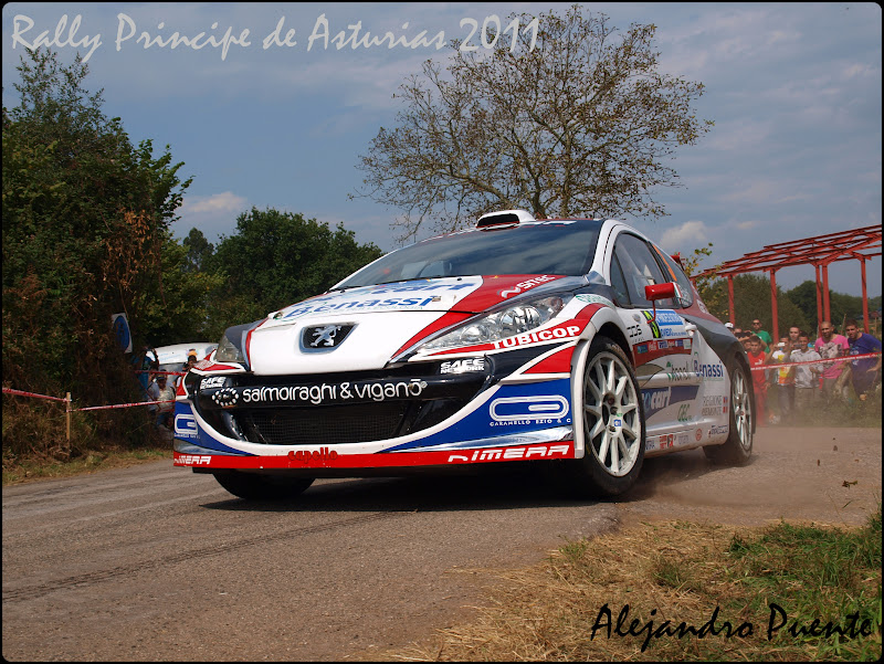 Rally Principe de Asturias P9102371