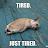 Topp Thaseela avatar image