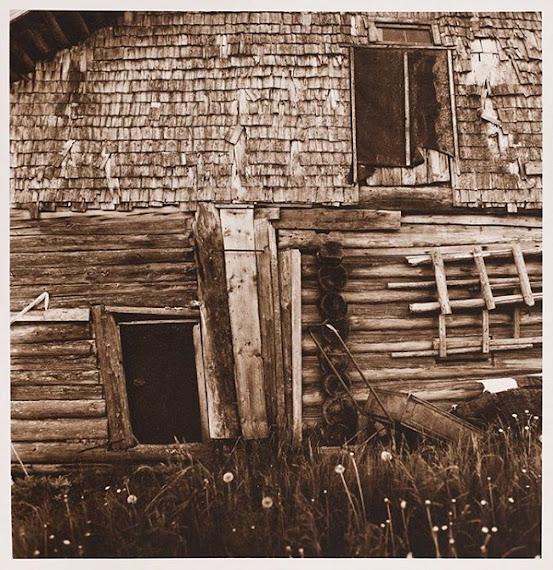 prints-toning-01