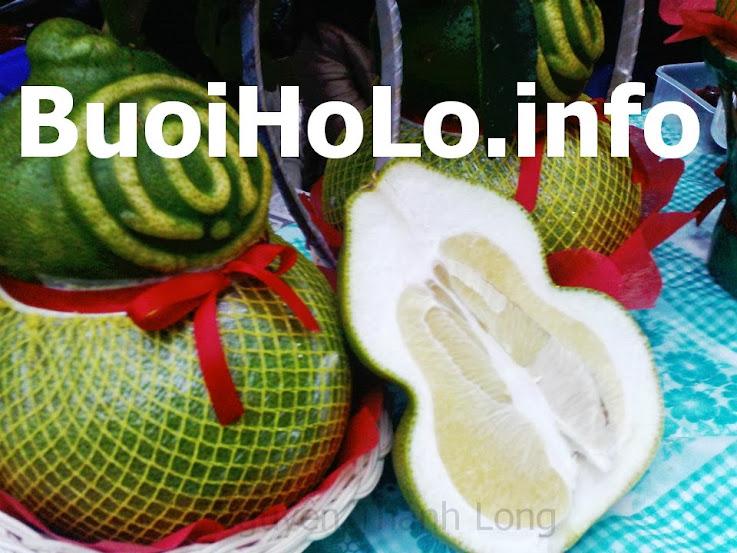 Buoi-Ho-Lo-Tai-Loc-An-Duoc-Khi-Da-Lam-Qua-Bieu-tet-2014