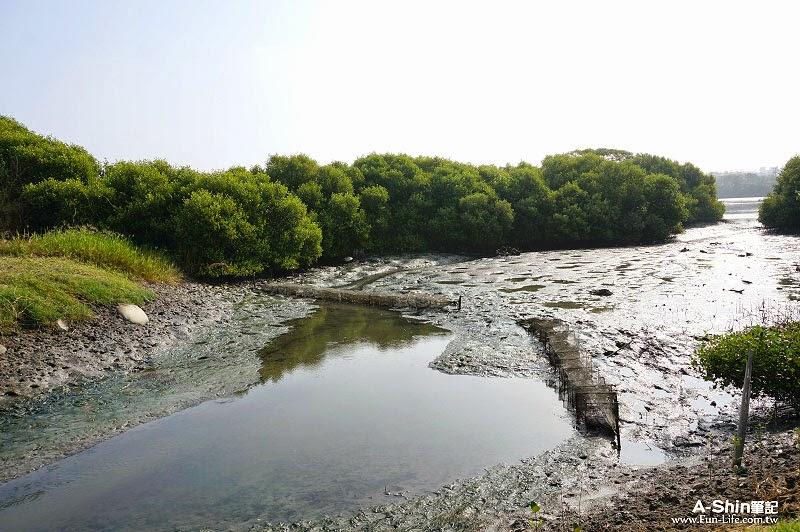 台江國家公園自行車道-16