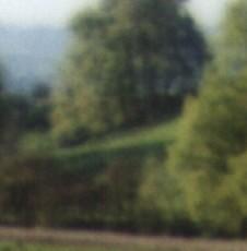 FOTO SFOCATE PROGRAMMA