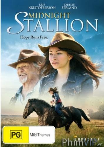 Đêm Nước Kiệu - Midnight Stallion poster