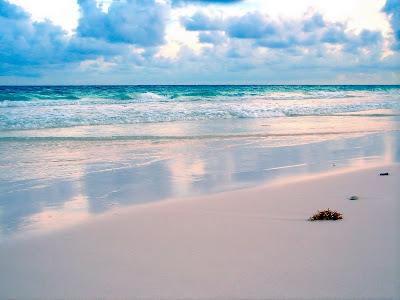 nature,Beach,Sand,Amazing Wallpapers