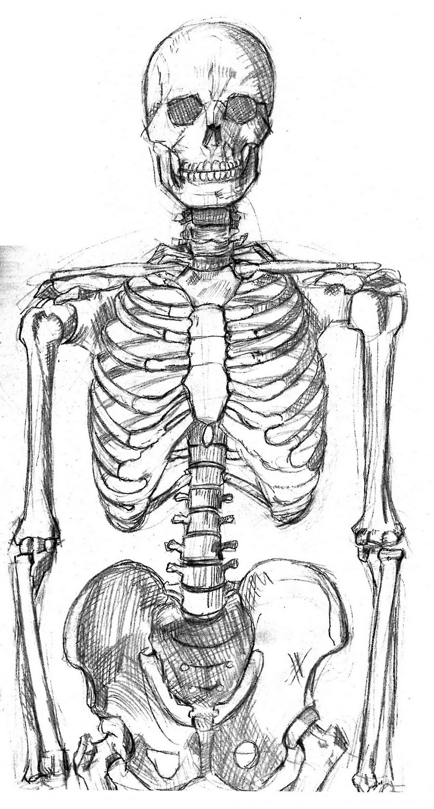 Uncategorized Draw A Skeleton 15 minutes to midnight the official blog of comic book life drawing part 6